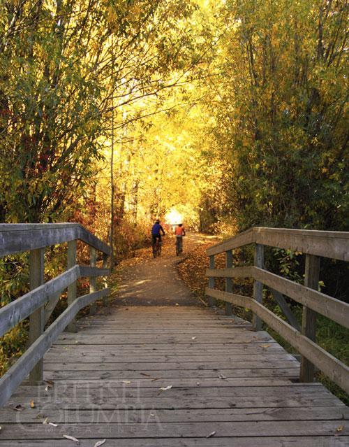 Cottonwood Island Nature Park Prince George Bc