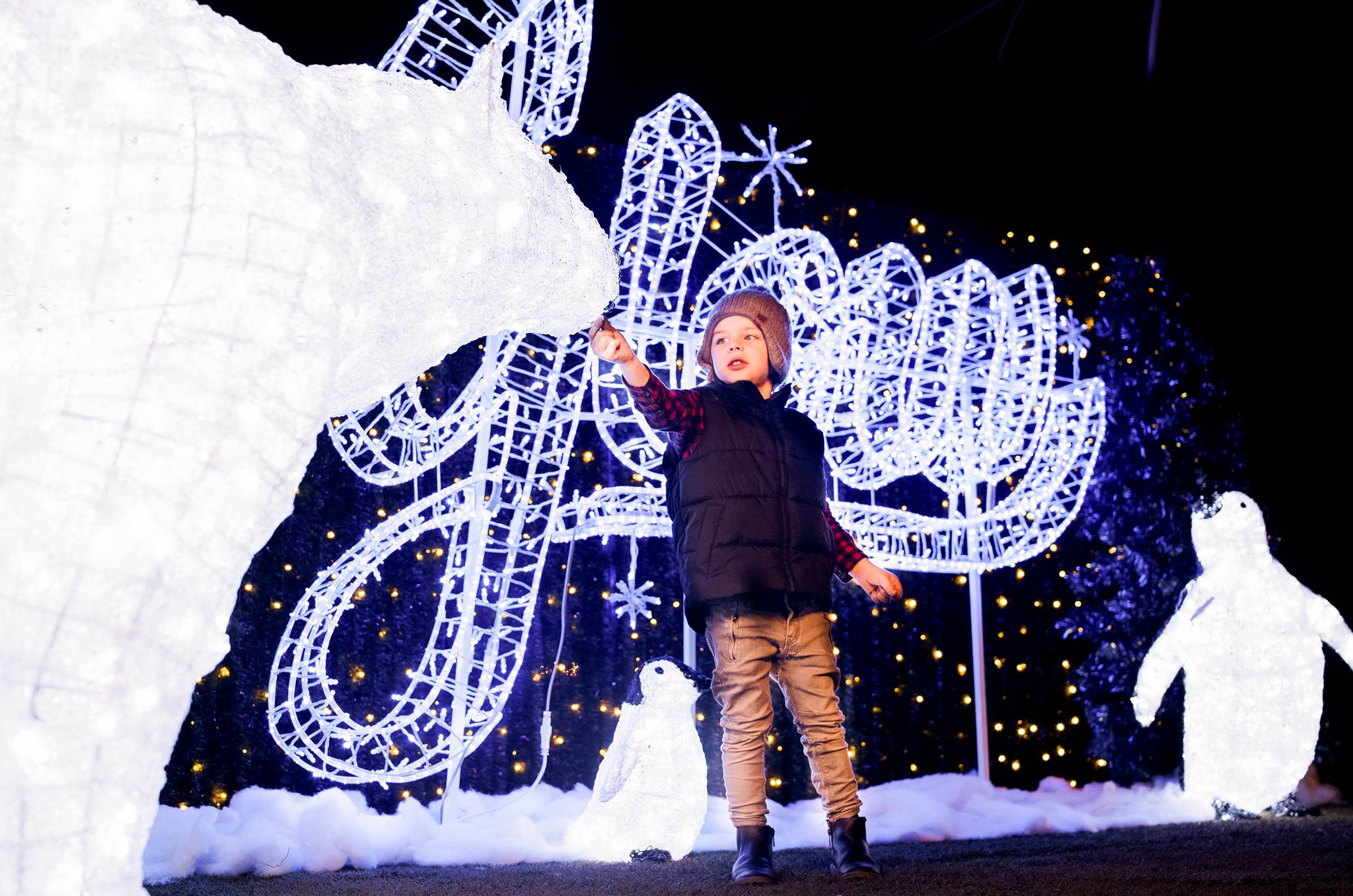 Merveilleux Glow Christmas Light Garden And Market Nov. 24 To Dec. 30, 2017