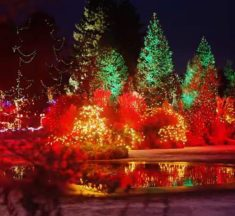 VanDusen Festival of Lights Dec. 1, 2017 to Jan. 7, 2018