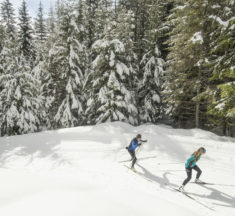 Nordic Skiing Around Kootenay Lake